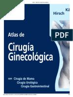 384809151-Kaser-Atlas-de-Cirugia-Ginecologica.pdf