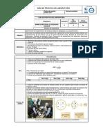 Guía de Práctica de Laboratorio Mirs