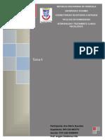 Informe de Psicologia Clinica
