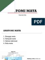 Anatomi Mata