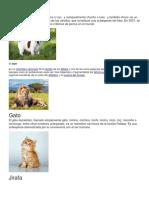 Animales Vertebrados e Invertebrados Con Su Concepto