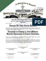 01.- TXT AMAVB OPERACIONES DE GUERRA ELECTRÓNICA 15.pdf