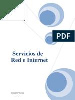67183100-Tema1-Servicios-de-Red-e-Internet.pdf