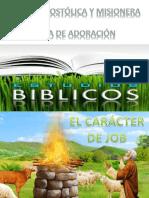 Estudio de Job