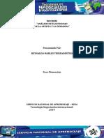 391298359 Actividad 8 Evidencia 1 Informe Analisis de Elasticidad de La Oferta Y La Demanda