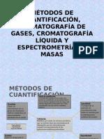 CG,HPLC Y EM