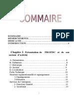 60481249-rapport-de-stage-comptabilite.doc