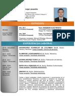 Hoja de vida - CO.pdf