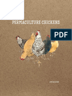 Chikens permacultura