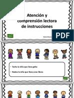 Atencion Comprension Lectora Instrucciones