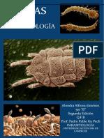 Alondra AJ AtlasP.pdf