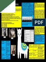 Alpacas Physical Exam Poster