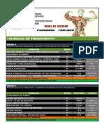 Planilha de treinamento 3 - TadeuMuller.pdf