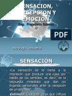 SENSACION, PERCEPCION Y EMOCION.pdf