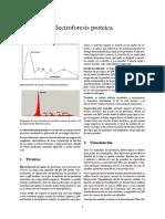Electroforesis proteica