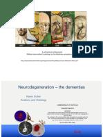 NEUR3005 Dementia 2019 Notes