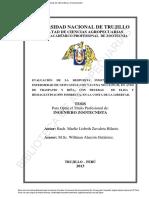 ayudin.pdf