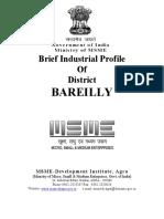 Bareilly.pdf