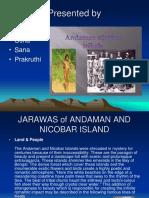 JARAWAS CASE STUDY