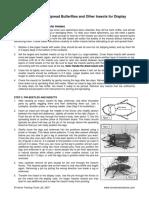IN-INSEPIN.pdf