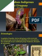 Presentacion Charla de Orquideas Indigenas