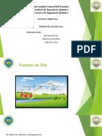 DIAPOSITIVAS SOX.pdf