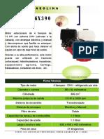 3_Motor gasolina Honda gx390.pdf
