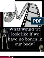 Bones and Muscles Day 1