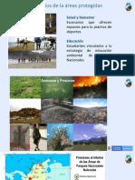 Informe País_Colombia 1