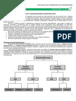 medresumos2016-neuroanatomia01-introduoneuroanatomia-170904040327.pdf