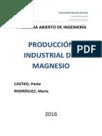 Produccion de Magnesio Rodriguez Castro