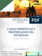 Petroleo_32575.pdf