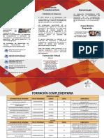 Portafolio_F_Complementaria_2019 (1).pptx