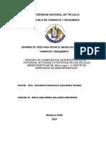Tesis Doctorado - Segundo Saavedra Suarez.pdf