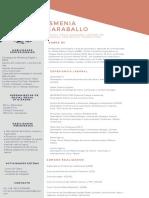 Curriculum Ismenia Caraballo