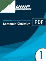 Anatomia Sistêmica