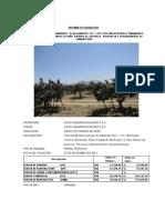 PREDIO RURAL Pre. Parcela 58, Denominado El Algarrobo U.C. 11711 Predio Rustico Tamarindo - Chiclayo - AGRO INDUSTRIAS ELIZONDO S.A.C.docx