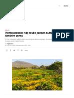 Planta parasita
