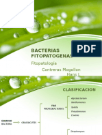bacteriasfitopatog-150321170158-conversion-gate01.pptx