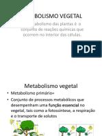 biossintese e metabolismo