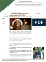 7 Cuidados Básicos de Las Mascotas en Navidad