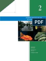 AMAZONIA_C2.pdf