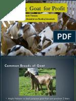 Raising Goats for Profit