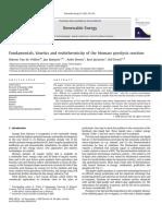 Fundamentalskineticsandendothermicityofthebiomasspyrolysisreaction