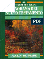 Panorama Del NT Portavoz