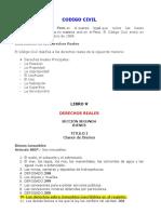 Codigo Civil, Procesal y Constitucion