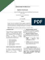 informe vegetales (1)