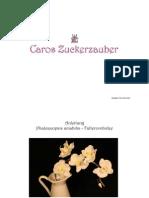 Anleitung_Phaleanopsis