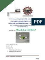 PROYECTO DE MACETA COPERA docx.docx