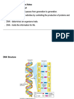 DNA and DNA Replication Notes